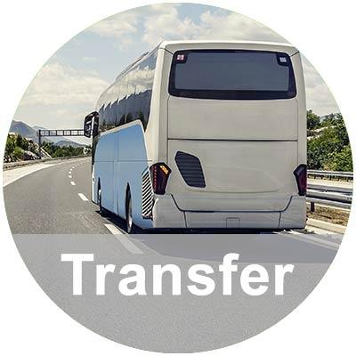 Weißer Bus auf Straße